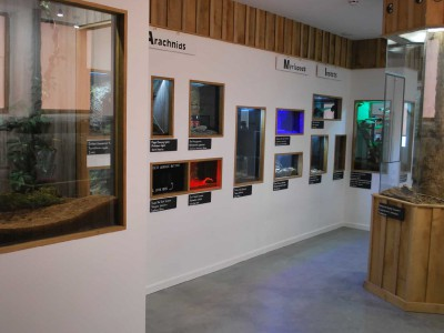 Exhibits and activities